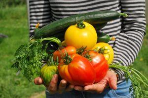 Zeleninový Víkend 9.-10.5.2015