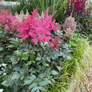 Podzim hýří barvami - 1188794 -
