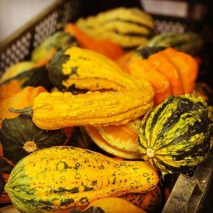 Podzim hýří barvami - 1188797 -