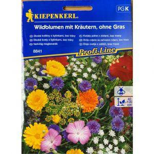 Květinová směs DIVOKÉ KVĚTINY A BYLINY - Kiepenkerl