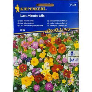 Květinová směs LAST MINUTE - Kiepenkerl