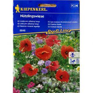 kopie Květinová směs LOUKA PRO UŽITEČNÝ HMYZ - Kiepenkerl