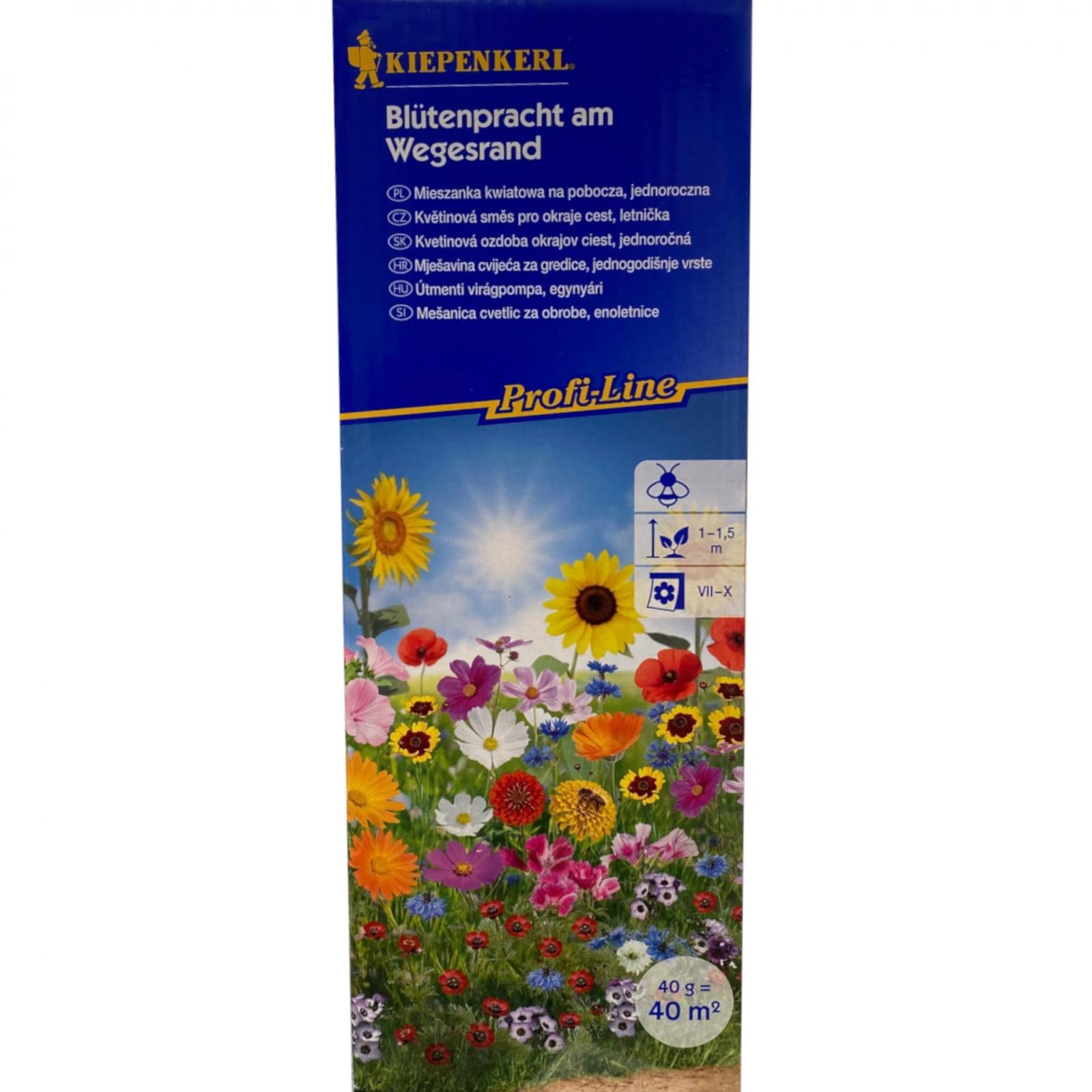 Květinová směs pro okraje cest