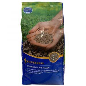 REGENERAČNÍ travní směs 1kg - Kiepenkerl
